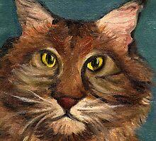 MaineCoon the cat by Kostas Koutsoukanidis