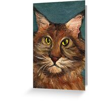 MaineCoon the cat Greeting Card