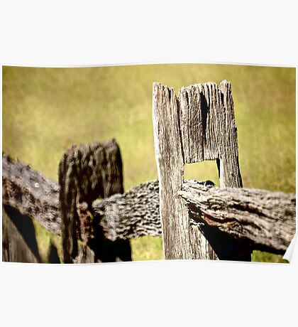 Rustic Fence Line Poster