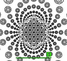 Crop Circle Metatron Vortex 22 IPHONE - Oct 2012 by David Avatara