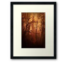 The Dark Woods Framed Print