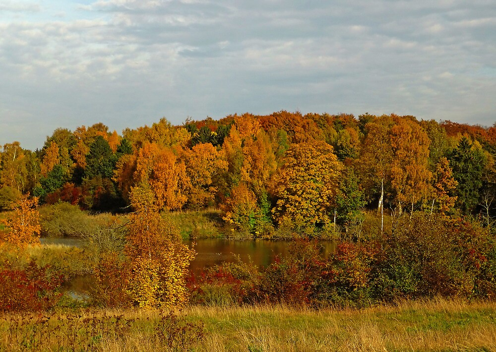 The colours of October by Trine