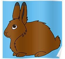 Brown Arctic Hare Poster