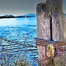 by the sea 47 by marcwellman2000