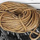 rope trick 89 by marcwellman2000