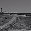 Farol do cabo da roca by Luis39