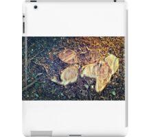 truncated iPad Case/Skin