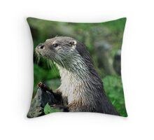 Male Otter Throw Pillow