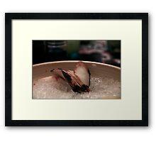Sushi on ice Framed Print