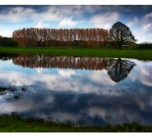 Flooded field  Photographic Print