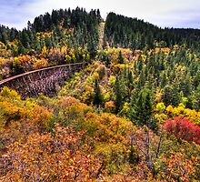 Mexican Canyon Trestle by Ray Chiarello