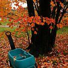 October by murrstevens