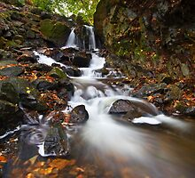 Leaves, Cascades and a Swirly Bit by Jeanie