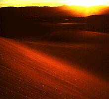 dunes... by Allan  Erickson