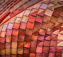 Dragonskin by mamate