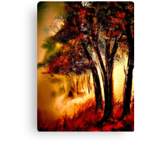 Sundown Glow.. Canvas Print