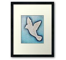 Dove on blue Framed Print