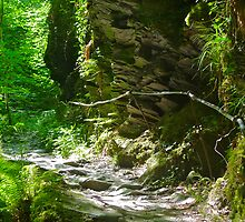 Lydford Gorge Trail 2 by magicaltrails