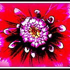 Abstract Flower in Pink by The Creative Minds