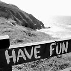 HAVE FUN  by copacic