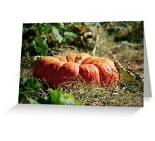 In the Pumpkin Patch Greeting Card