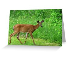 Backyard Surprise! FEATURED PHOTO Greeting Card