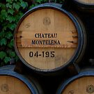 Chateau Montelena by Richard Rushton