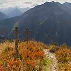 Hiking in Fall by Walter Quirtmair