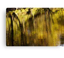 Autumn Rush  Canvas Print