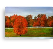""""""" Fall Fenced In """" Canvas Print"""