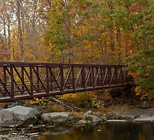 Footbridge Across A Stream - Rural Pennsylvania in Autumn by MotherNature