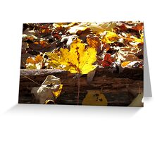 It's Autumn in New York! Greeting Card