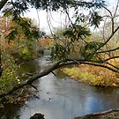 Along the Mousam River in Springvale, ME by quiltmaker