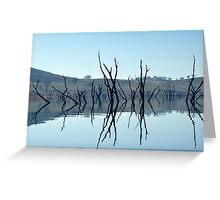 lake with dead tree stumps  Greeting Card