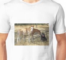 Foals & dog  Unisex T-Shirt