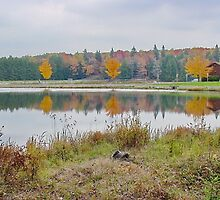 Parker Dam State Park by Penny Rinker