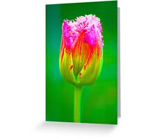 PopArt Tulip Greeting Card