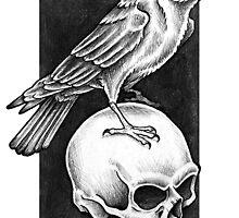 Omen Crow by Paula Stirland
