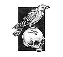 Omen Crow Photographic Print