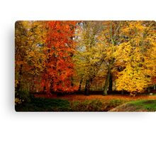Autum Part I. Canvas Print