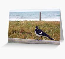 Beach Bird Eleven - 14 10 12 Greeting Card