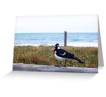 Beach Bird Seven - 14 10 12 Greeting Card