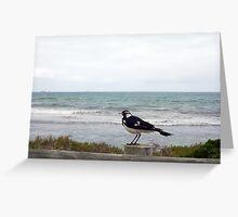 Beach Bird Five - 14 10 12 Greeting Card