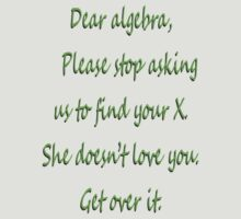 Dear Algebra Stop Finding X by David Ayala