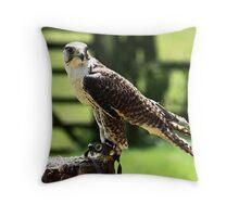 Gyr x Saker Falcon Throw Pillow