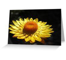 Sunbrella Greeting Card