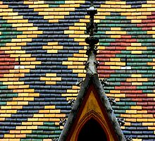 Rooftop - Hospices de Beaune by Colin Shepherd