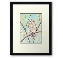 Owl By Day Framed Print