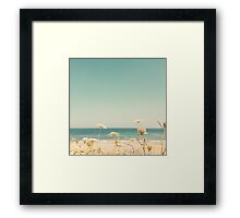 Water and Lace Framed Print