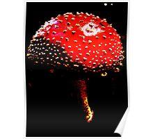 Dark Mushroom Poster